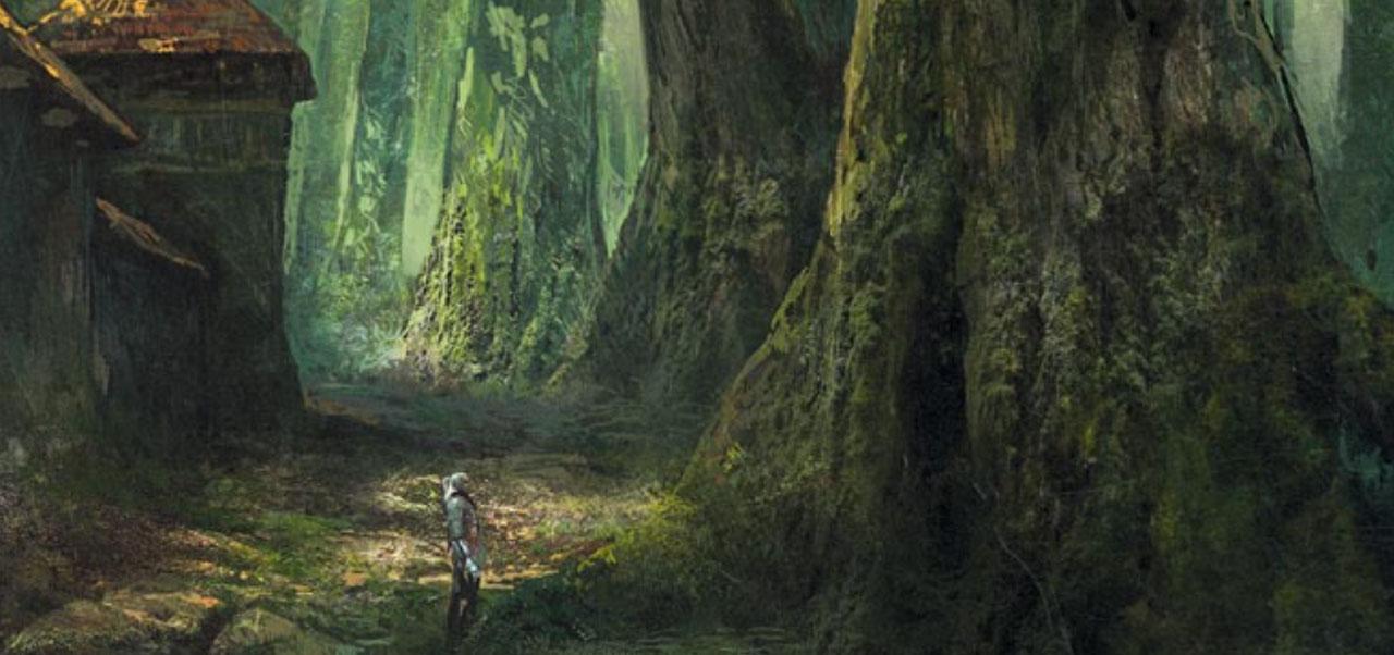 Floresta em The Witcher 2